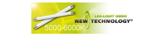Tubos LED 5000-6000K